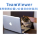 TeamViewerが商業利用と判定されてしまったときの対処法!英文例あり