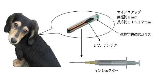 http://www.nirenoki.info/about_microchip.html